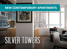 Silver Towers Premium Ad